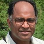 Prof. Mahesan Niranjan